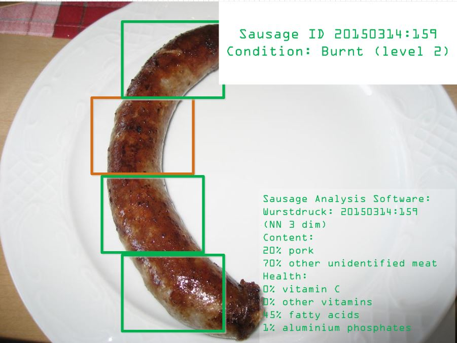 Sausage Analysis Software (SAS)